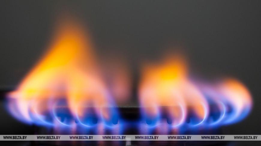 Румас видит возможность договориться с Россией о справедливой цене на газ