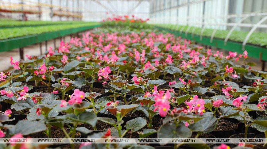 Минсельхозпрод предлагает обсудить изменения в закон о карантине и защите растений