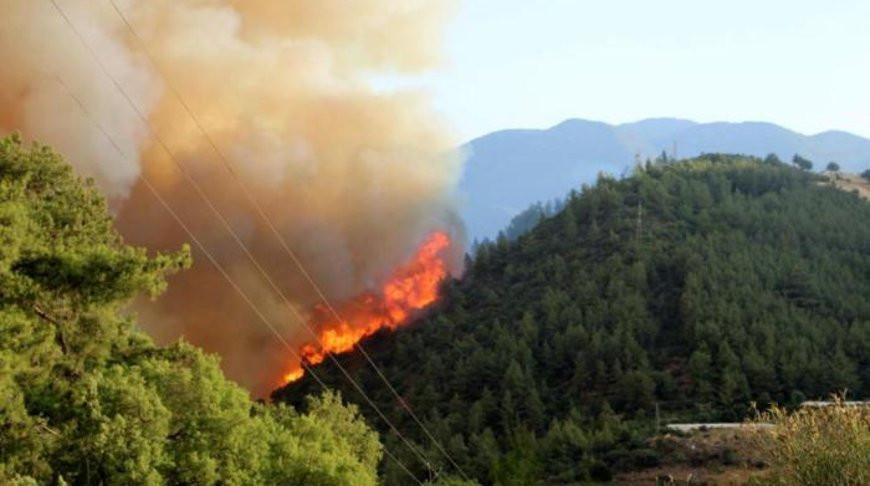 Лесной пожар в Турции. Фото  marmaracagdas.com