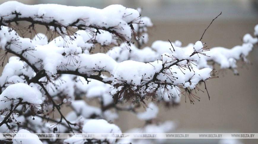 Снег и до -13°С ожидается в Беларуси 8 февраля