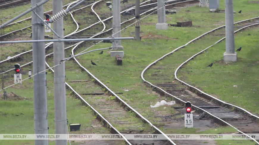 Поезда Москва-Брест и Калининград-Москва отменяются