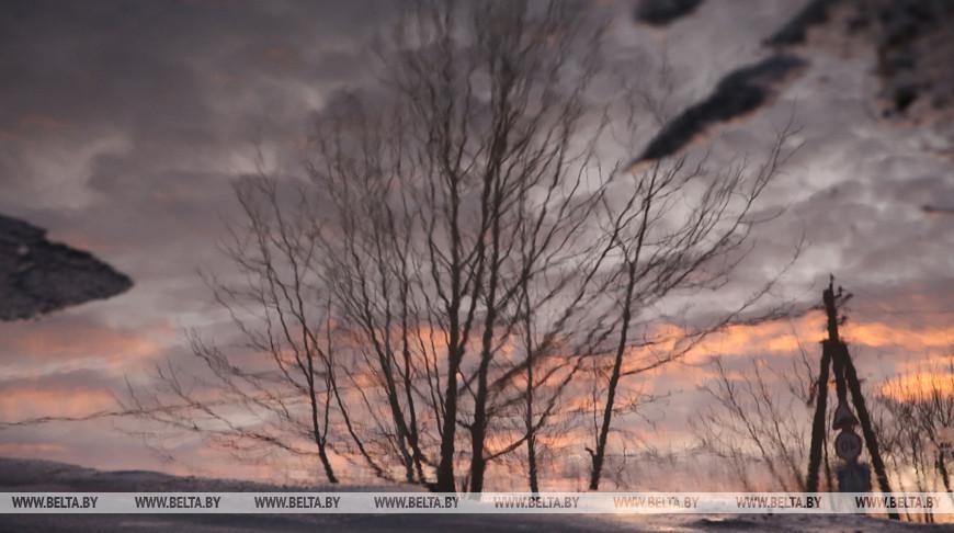 Ночные заморозки ожидаются в Беларуси 31 марта. В Бресте тоже