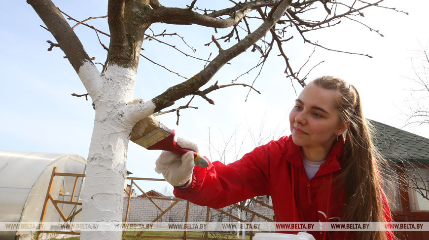 В Беларуси стартует «Неделя добра»