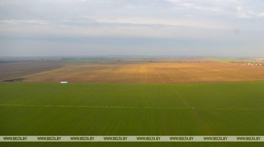 В Беларуси подготовят нацплан действий по предотвращению деградации земель до 2025 года
