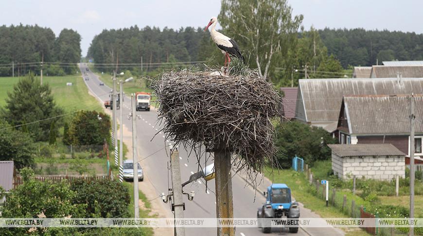 Превышений радиационных параметров в Беларуси в июне не зафиксировано - Белгидромет