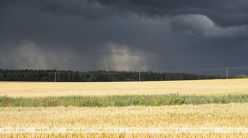 Оранжевый уровень опасности объявлен по северо-западу Беларуси во второй половине дня из-за гроз