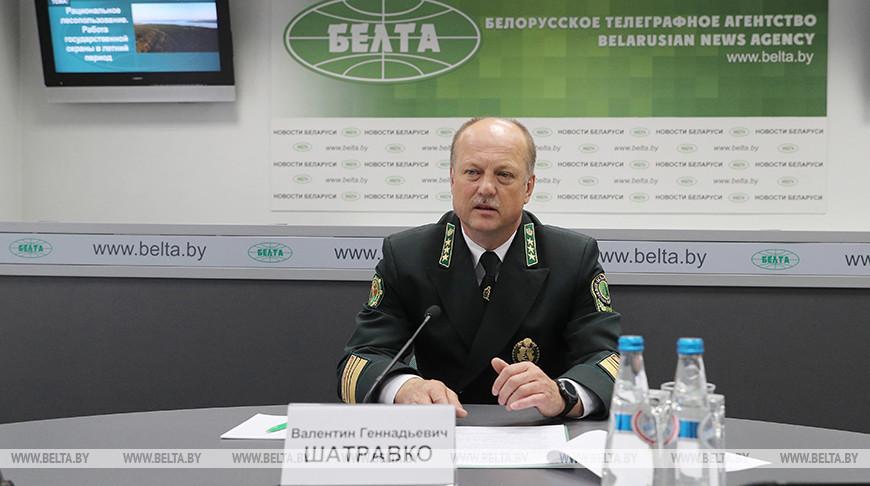 В Беларуси в этом году произошло 828 лесных пожаров