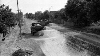 Дезактивация в деревне Дворище, 1986 год