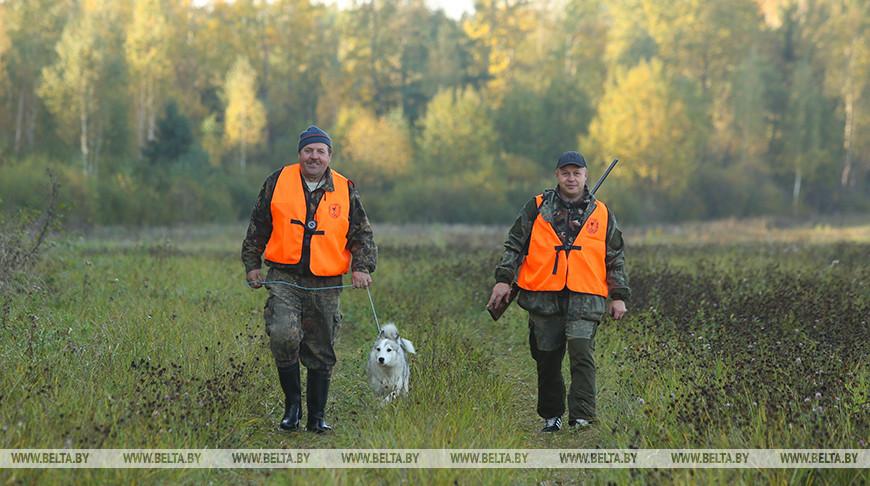 Минлесхоз рассказал, какие изменения планируется внести в правила охоты