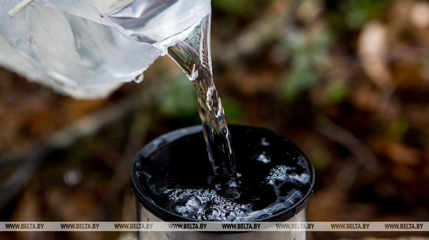 Лесхозы Брестской области начали поставлять березовый сок на экспорт