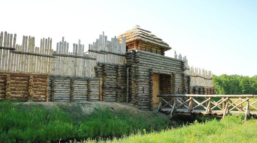 """Фото национального парка """"Беловежская пуща"""""""