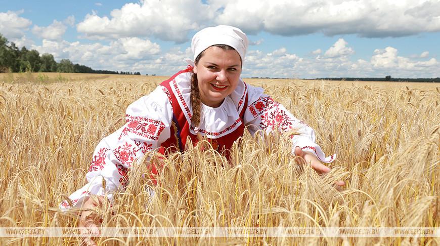 Обряд 'Зажинки' провели в Могилевской области