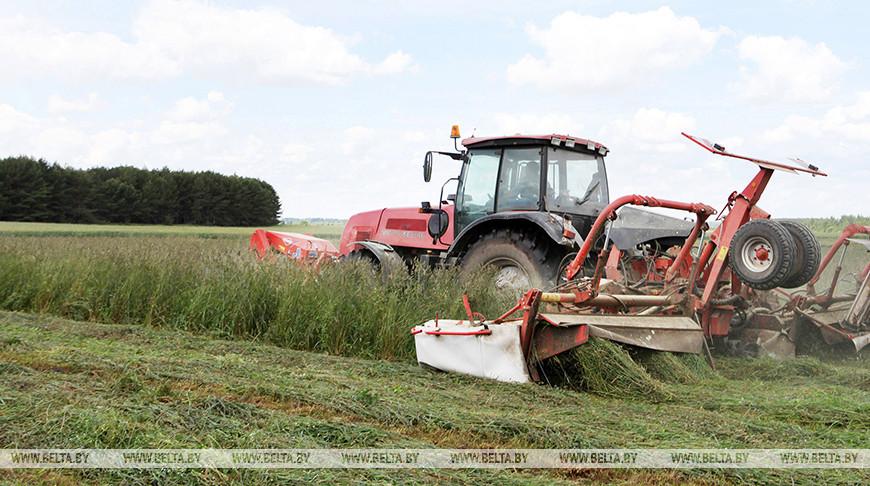 Сельхозорганизации Брестской области приступили к третьему укосу трав
