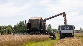 Во время выгрузки зерна