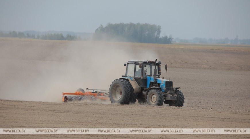 По всей Гомельской области приступили к севу озимых зерновых