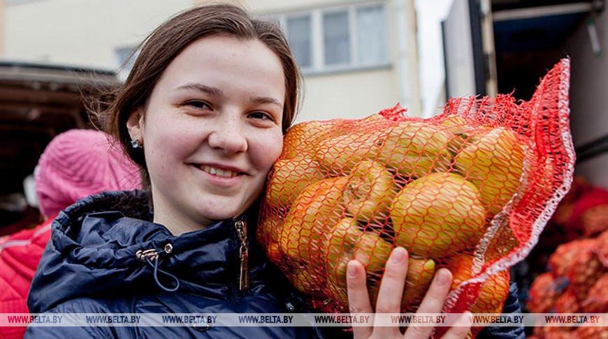 Сельскохозяйственные ярмарки пройдут в столице 14 и 15 ноября