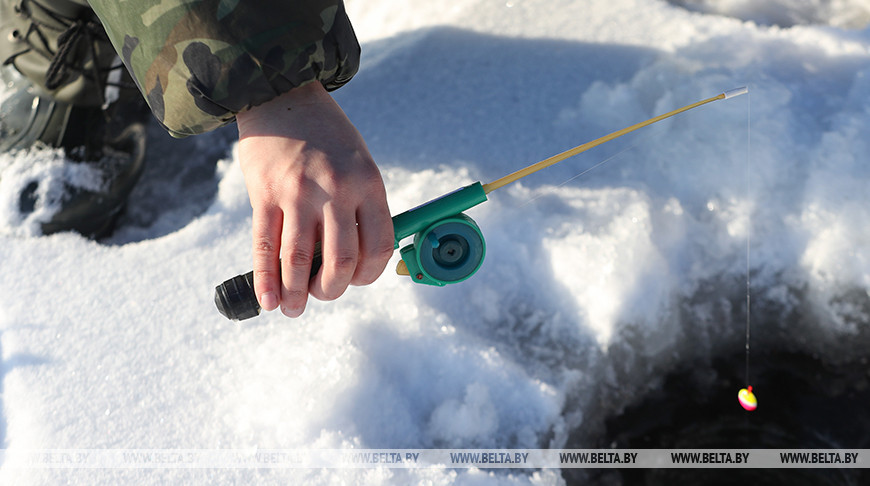 В Витебской области с 25 декабря до конца зимы запретят ловить налима
