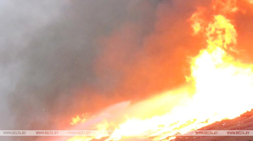 В Могилеве при пожаре частного дома погибла женщина