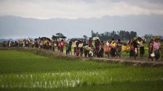 Беженцы рохинджа. Фото из архива Associated Press