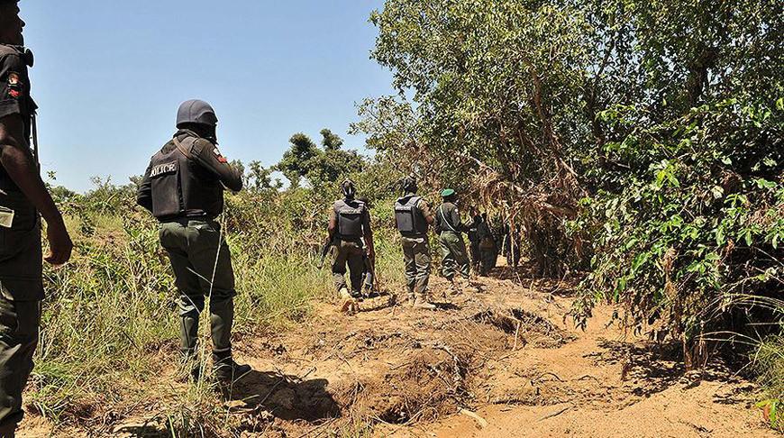 В Нигерии ликвидированы 135 боевиков