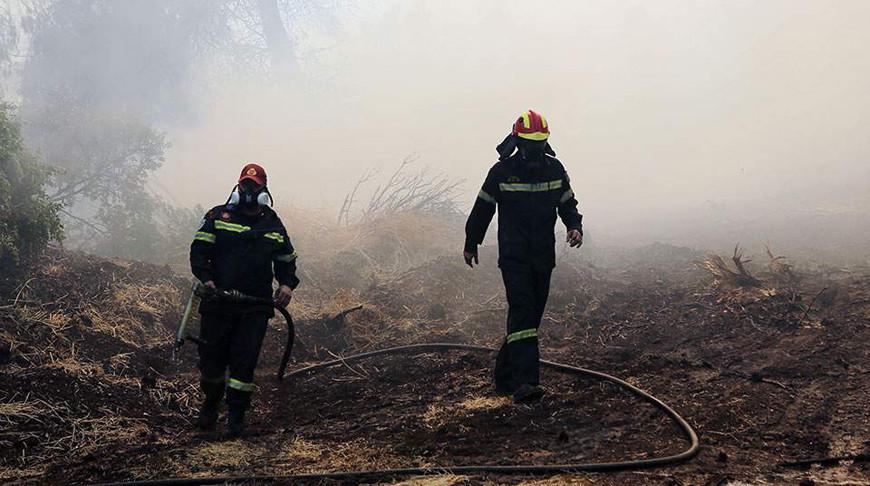 На юге Греции продолжается борьба с крупным лесным пожаром
