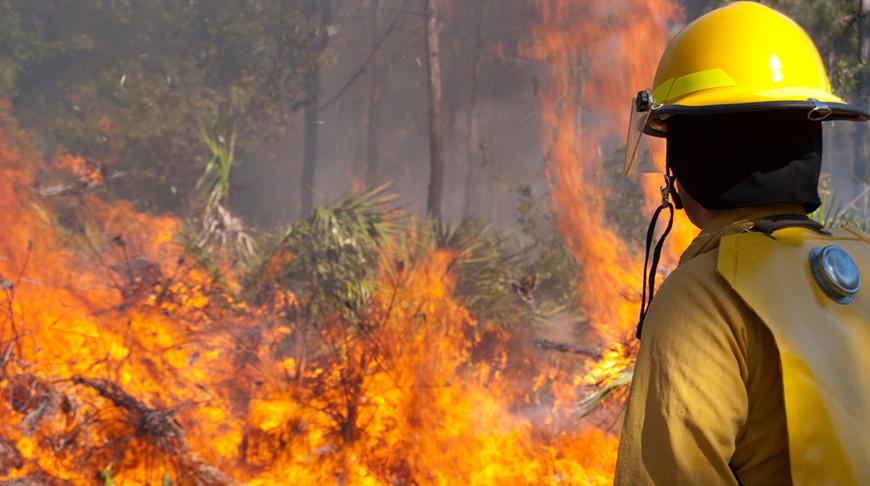 Фото firecorps.org