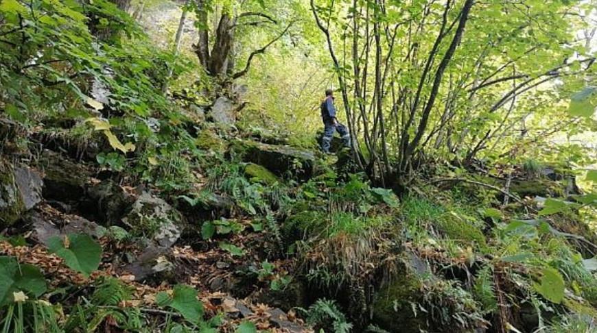 Потерявшаяся в горах под Сочи группа туристов вышла на связь