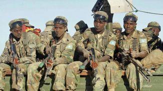 Фото Somali Guardian
