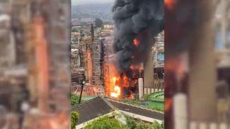 Скриншот из видео News24