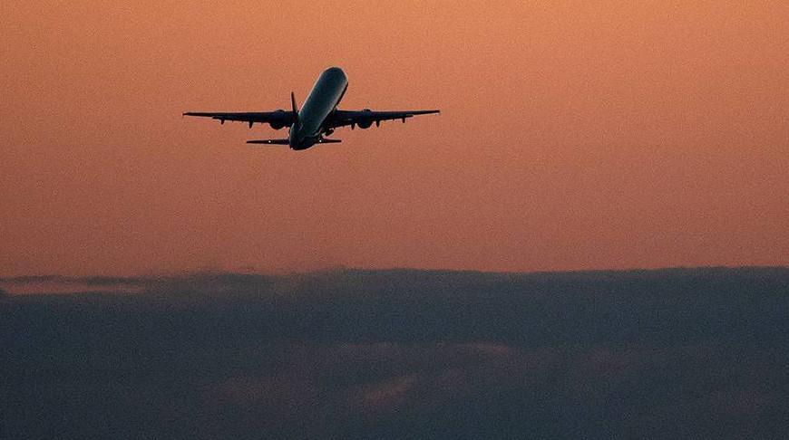 Российские авиакомпании за 11 месяцев сократили перевозки на 46,2%