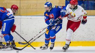 Во время матча. Фото Федерации хоккея Словакии