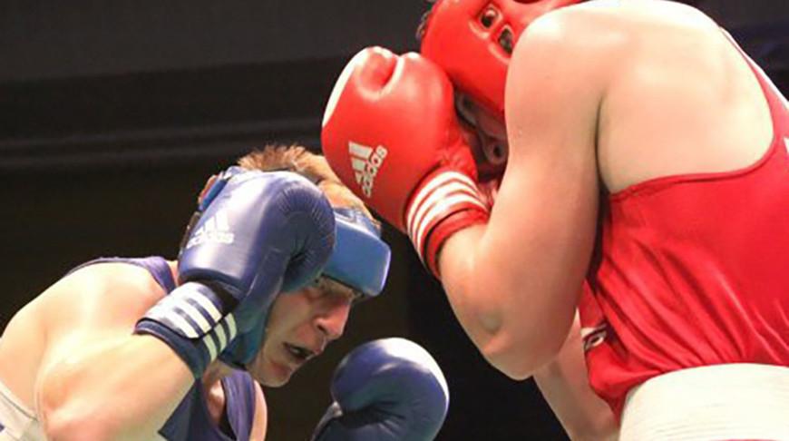 Стали известны победители чемпионата Беларуси по боксу в Молодечно