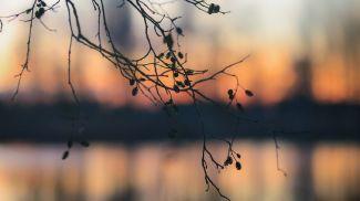 Вечер на берегу озера в агрогородке Миловиды Барановичского района