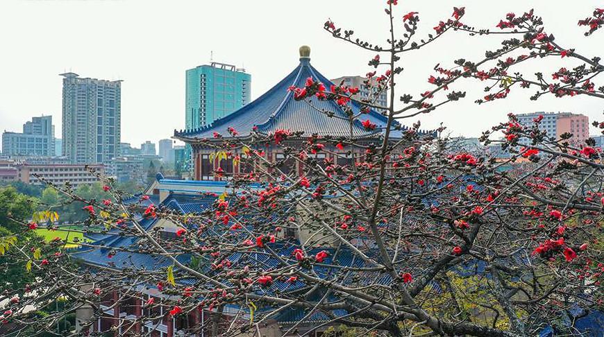 Фото Синьхуа