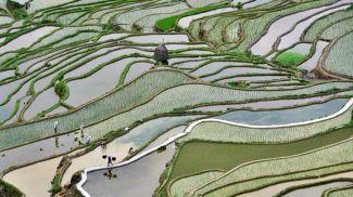 Фото Visual China