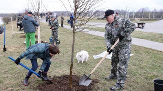 Александр Лукашенко во время субботника