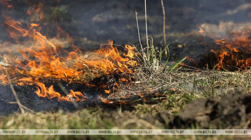 Минприроды напоминает о запрете на сельхозпалы и выжигание сухой растительности