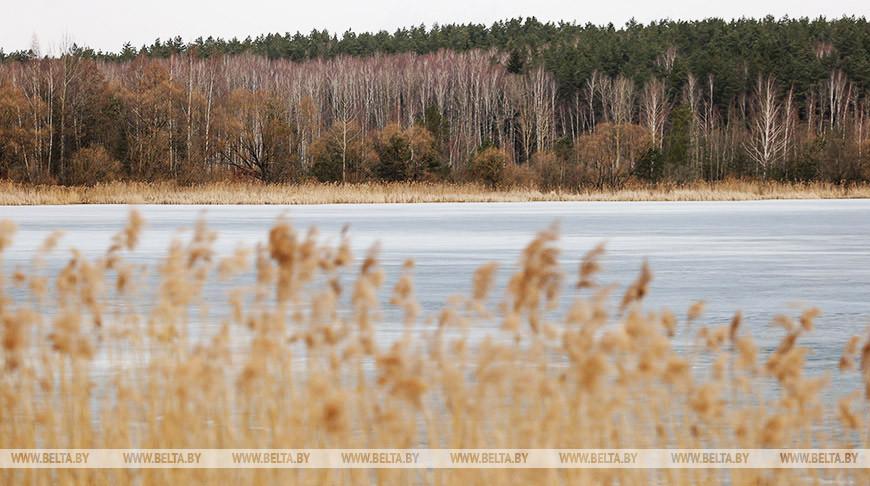 Мокрый снег и дождь ожидаются в Беларуси 3 апреля