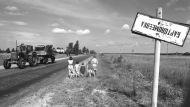 Чернобыльская зона. Жизнь до и после в архивных фотографиях БЕЛТА