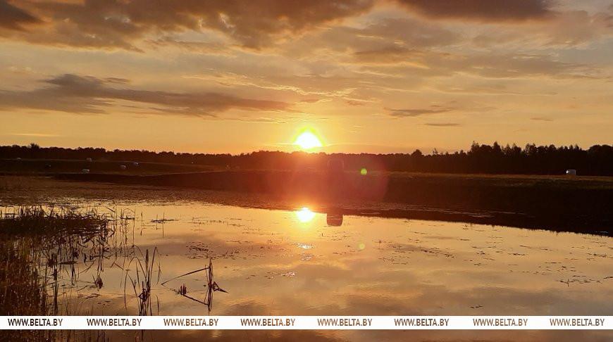 Дожди, грозы и до +25°С ожидается в Беларуси 12 августа