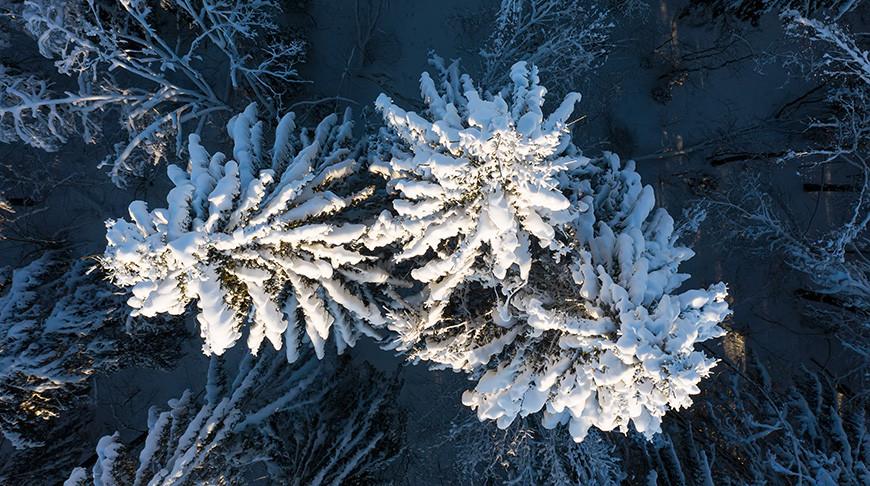 Мороз в Минской области