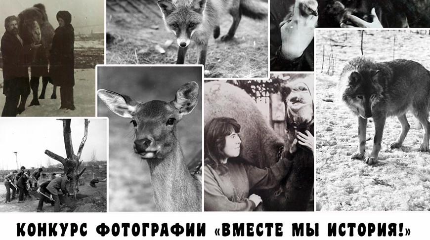 Фото Минского зоопарка