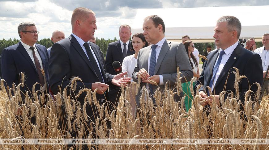 Леонид Заяц и Роман Головченко