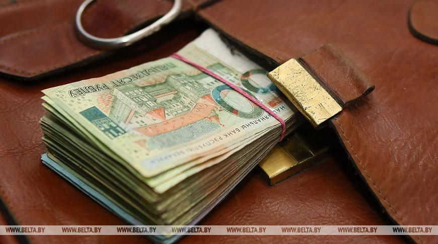 Могилевские налоговики обязали ИП доплатить в бюджет Br49 тыс.