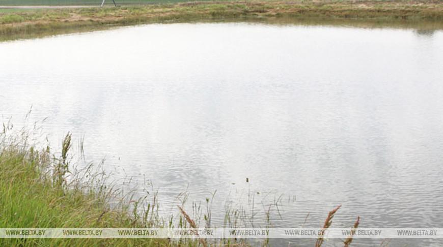 В Щучине спасли упавшую в пруд девочку