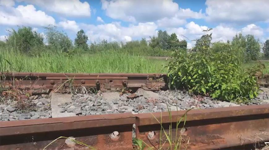Скриншот из видео УВД Могилевского облисполкома