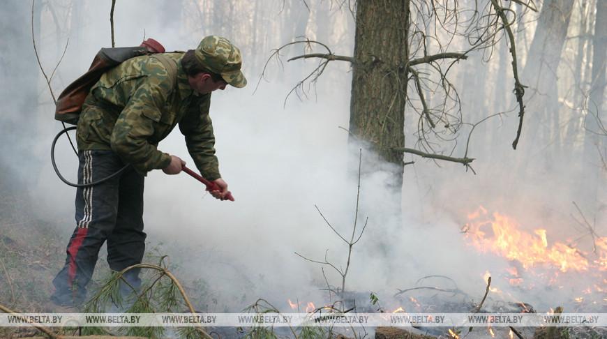 За прошедшие выходные в лесном фонде Минлесхоза произошло 10 пожаров.