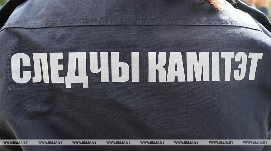 В Березинском районе мужчину насмерть придавило деревом