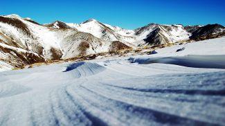 Фото pxhere.com