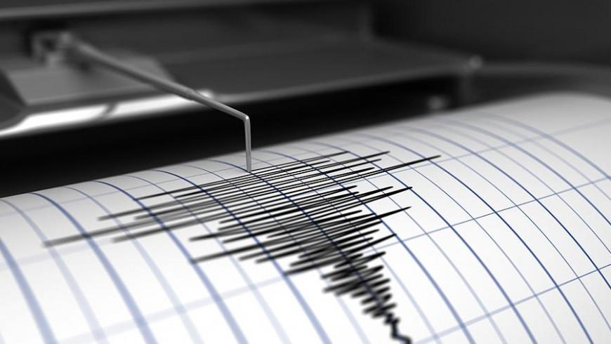Около 25 афтершоков зафиксировали после землетрясения в Тихом океане